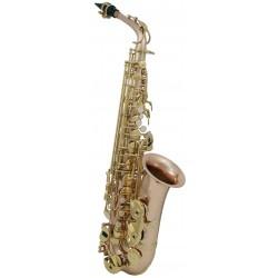 Saxofon Alto Roy Benson AS 202G